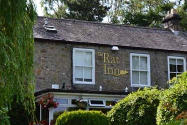 The Rat Inn