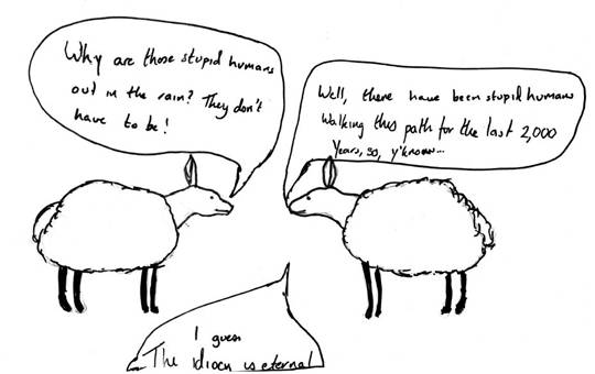 Cartoon of sheep wondering why people are walking in the rain