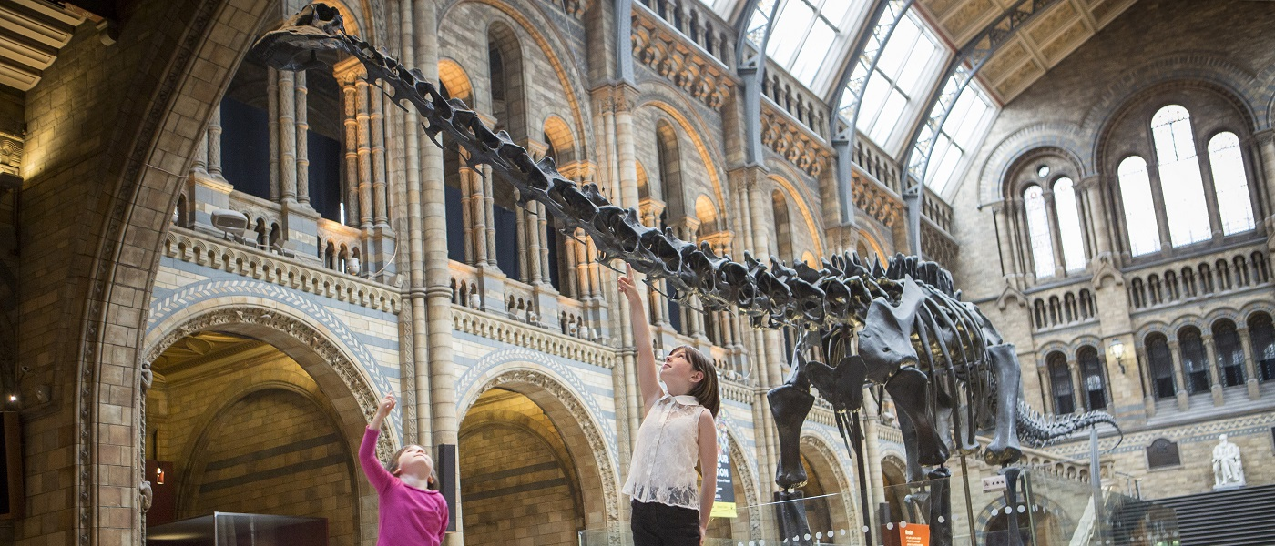 Children with the Diplodocus exhibit at the NHM, London