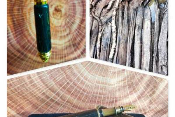 Wooden pen collage